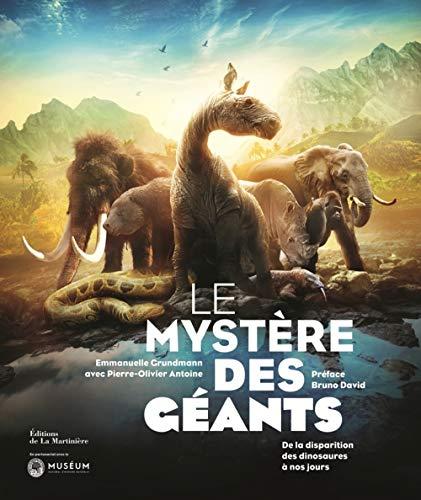 Le mystère des géants par Emmanuelle Grundmann