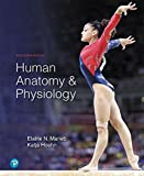 Human Anatomy & Physiology Plus Mastering A&p with Pearson Etext - Access Card Packag...