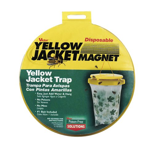 victor-disposable-wasp-trap-includes-bait