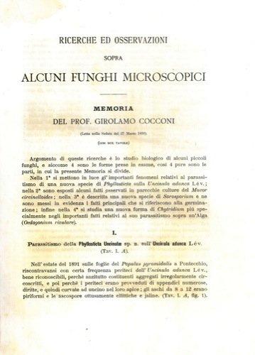 Ricerche ed osservazioni sopra alcuni funghi microscopici.