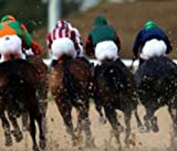 Easy Horse Racing Rating System