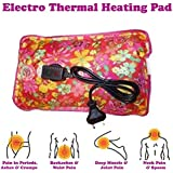 Saleon Electrothermal Warm Bag For Pain Releif & Massager (Assorted Colors)(Any Color)-112