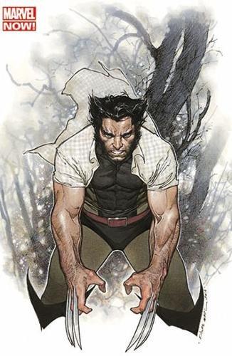 Wolverine 2013 001 vc
