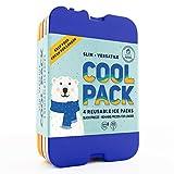 [Nouveau] de froid, FIN longue durée Ice Packs-Idéal pour refroidisseurs ou...