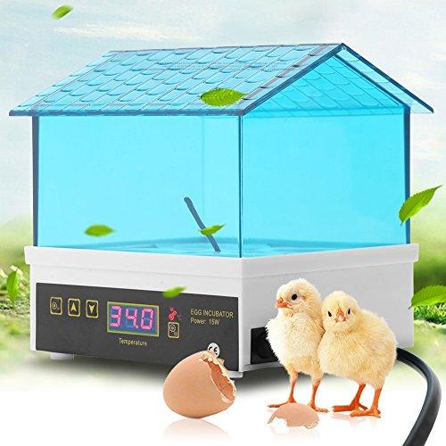 SOULONG Incubatrice Automatica di Uova, Mini Egg Hatching 4 Egg incubatrice, Incubatore Intelligente Digitale con Schermo a LED per 4 Uova, incubatrice per volatili da Cortile, Galline, oche, Anatre