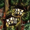 Solar Laternen Party Lichterkette, 10 LEDs warmweiß, 2,7m, von Festive Lights