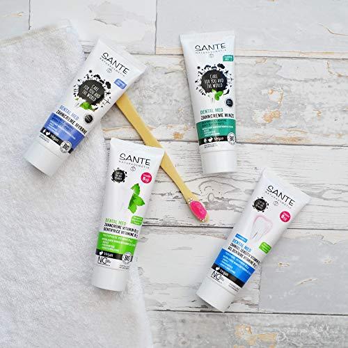SANTE Naturkosmetik Dental Med Zahncreme Minze, Ohne Natriumfluorid, Vegan, Schützt Zähne & Zahnfleisch, Bio-Extrakte, 3x75ml Multipack