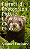 Ferret Hd Photograph Picture book Super Clear Photos (English Edition)