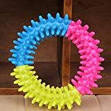 Pet Dog Rubber Thorn Ring Teeth Chew Training Fetch Toys Dental Play Funny Circle Non-Toxic color random