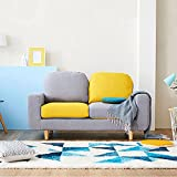 Furny Magnum Two Seater  Sofa (Grey and Yellow)