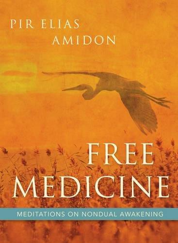 free-medicine-meditations-on-nondual-awakening