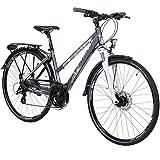 Whistle 28 Zoll Trekkingrad Crossrad Damenrad 24 Gang 44 cm oder 49 cm, Rahmengrösse:44 cm
