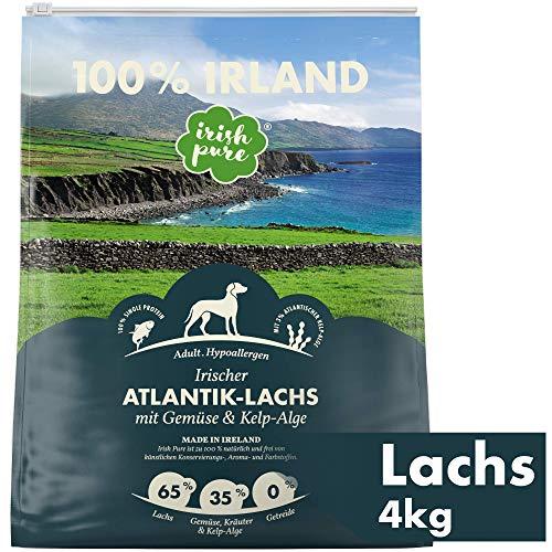 Irish Pure Adult Atlantik-Lachs mit Kelp-Alge & Gemüse - Hypoallergenes Trockenfutter für Hunde, Hoher Fleischanteil, Getreidefrei, Sensitiv, Hundetrockenfutter, Hundefutter für alle Rassen (4kg)