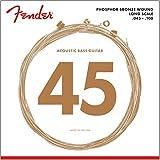 Fender 8060 Jeu de Cordes pour Basse acoustique