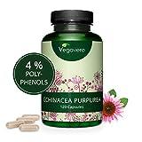 Extracto de Equinácea Vegavero | 6000 mg | LA DOSIS MÁS ALTA | 4% Polifenoles | Sin Aditivos |...
