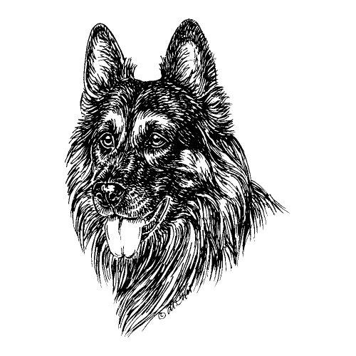 Schecker Warnschild Hier wache ich groß Deutscher Langhaarschäferhund