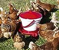 Kerbl Geflügeltränke Geflügeltränkeeimer, Tragebügel, Automatische Wasserzufuhr