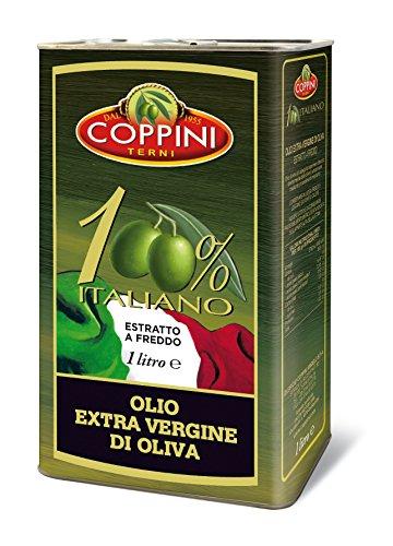 Olivenöl extra nativ von Coppini einem Familienbetrieb aus Umbrien / Italien | mild und fruchtig | Kaltgepresst für Premium Qualität | im praktischen 1 Liter Kanister