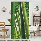 Apalis Raumteiler - Bamboo Trees No. 1 250x120cm, Aufhängung: inkl. Transparenter Halterung