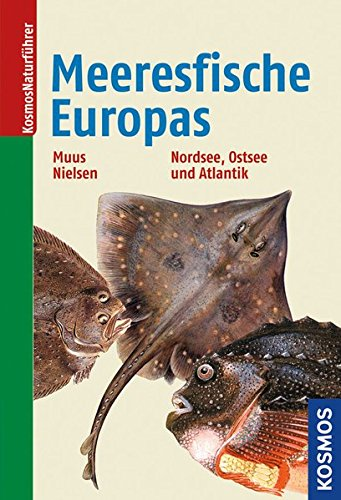 Die Meeresfische Europas: in Nordsee, Ostsee und Atlantik