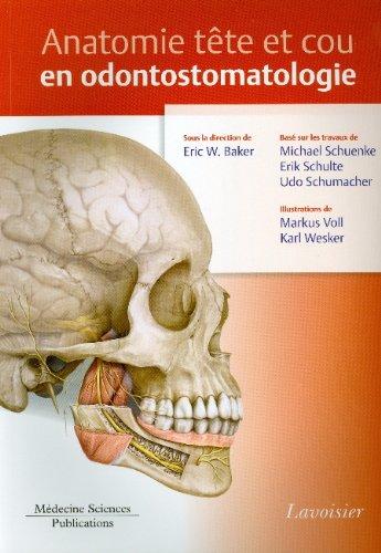 Anatomie tête et cou en odontostomatologie