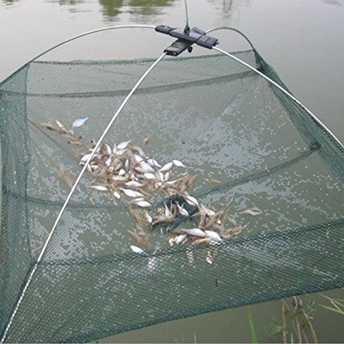Angeln Faltbare Mesh Köder Hüllee Umbrella Cast Dip Net Crab Garnelen -
