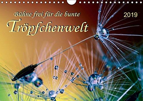 Bühne frei für die bunte Tröpfchenwelt (Wandkalender 2019 DIN A4 quer): Bilder voller Romantik und Schönheit in zarten Farben. (Monatskalender, 14 Seiten ) (CALVENDO Natur)