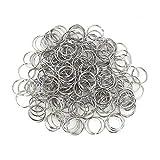 Round Metal Split Keychain Rings 200pcs for Car Home Keys Organization DIY Crafts Makings (1 inch / 25mm)