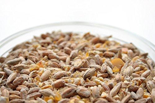 10 Kilo bio Hühnerfutter und Wachtelfutter Körnermischung -