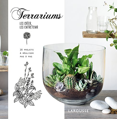 terrariums-les-creer-les-entretenir