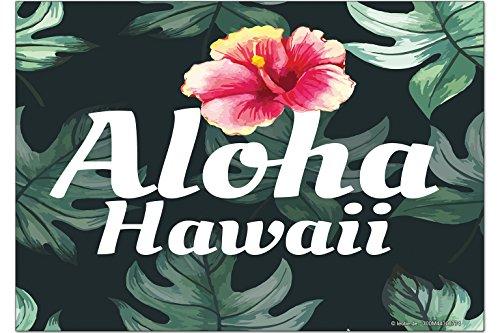 Kühlschrank Hawaii (Kühlschrankmagnet Welt Reise Hawaii Aloha)