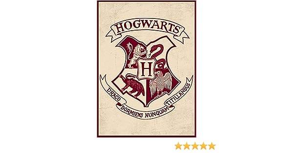 Harry Potter Poudlard officiel Film Gift Magnet Marchandise en m/étal