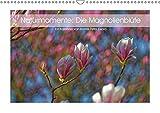 Naturmomente: Die Magnolienblüte (Wandkalender 2019 DIN A3 quer): Die Magnolie - unser schönster Frühlungsbote (Monatskalender, 14 Seiten ) (CALVENDO Natur)