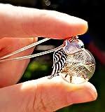 Joyería del día de la madre Corazón de oro rosa Ala del ángel Collar de diente de león Cadena PLATA ESTERLINA y caja de regalo - Colgante Amor corazon joyas de oro rosa para mujeres