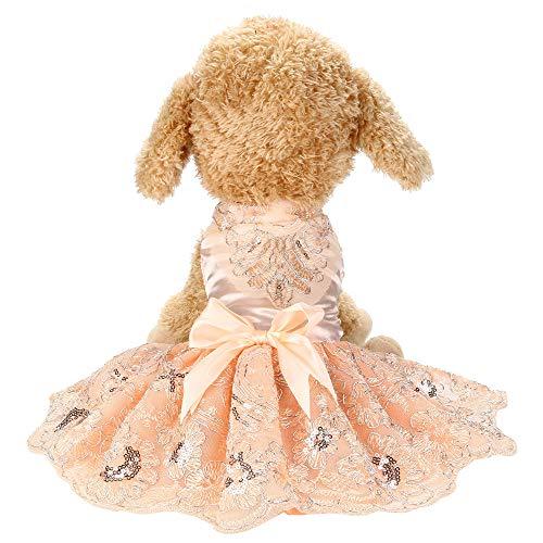 dung xs Hund Mädchen Kleid, Pailletten Spitze bestickte Spitze Tutu Weste Kleid Kleidung für Haustier ()