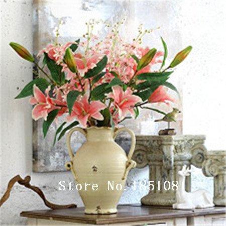 Big promotion de nouvelles plantes de lys bonsaï intérieur graines parfum de lys graines de fleurs - 100 graines