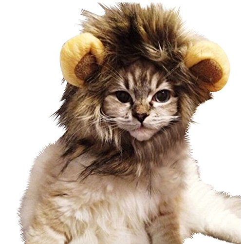 Harrington Marley Perruque crinière de lion pour chat
