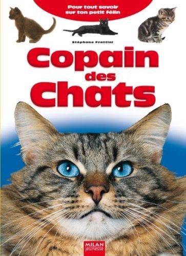 Copain des Chats : Pour tout savoir sur ton petit félin