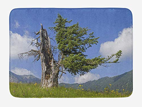 Natur Life Super Green (Nature Bath Mat, Old Spruce Tree Coming Back to Life from Death in Summer Meadow Country Image, Plush Bathroom Decor Mat with Non Slip Backing, 23.6 W X 15.7 W Inches, Blue Olive Green)