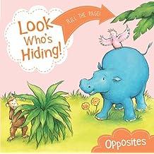 Look Who's Hiding: Opposites
