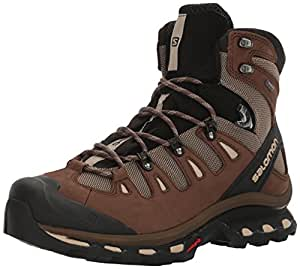 Salomon Men's Quest 4D 2 Gtx Backpacking Boot, Fossil/Rain Drum/Humus, 10 M US