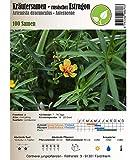 Semi di erbe - Dragoncello - Estragone russo / Artemisia dracunculus 100 Semi