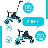 GoodLuck Baybee - 2 in 1 Convertible Baby Tricycle Kids Trike with Parental