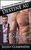 Destiné au prince Dragon: Romance gay paranormale