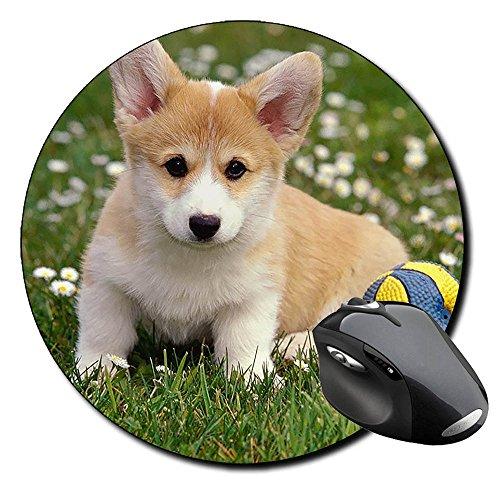 Corgi Gales De Pembroke Welsh Corgi Pembroke D Tappetino Per Mouse Tondo Round Mousepad PC