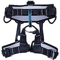 LLXYM Cueva Rappeling Roca Escalada Trabajo Aéreo Confort Medio Cuerpo Cinturón Cintura Leggings Cinturón De Seguridad,Black,OneSize