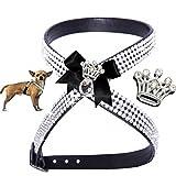 S schwarz Krone Chihuahua Hunde Strass Geschirr Hundegeschirr Softgeschirr