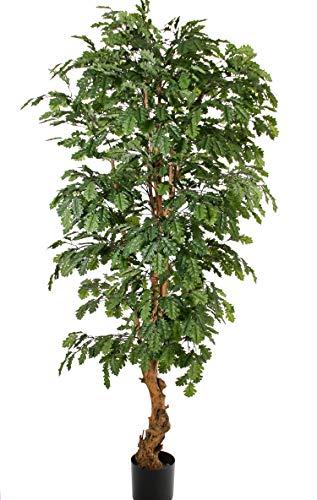 artplants Set 'Künstlicher Eichenbaum + Gratis UV Schutz Spray' - Kunstpflanze Eiche AKASIYA, Naturstamm, mit Eicheln, grün, 210 cm