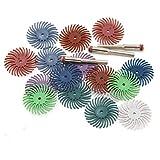 Chiloskit - 16 pinceles de disco de cerdas radiales de 2,5 cm para pulido de tallado de energía nuclear; Grit 80#-2500#.