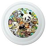Grafiken und Mehr Animal Buddies Selfie Panda Eisbär Faultier Lemur Toucan Neuheit 22,9cm Flying Disc